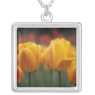 Collier Tulipes 2