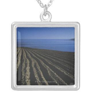 Collier un champ labouré près de la mer