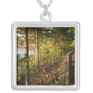 Collier Un passage couvert en bois en parc national Maine