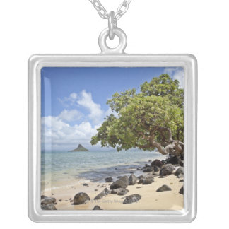 Collier Une vue regardant le long du rivage vers