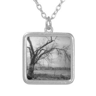 Collier Vieille gamme de gris d'arbre d'hiver
