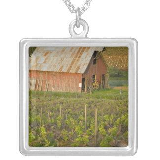 Collier Vieille grange rouge au bord du vignoble Zinfandel