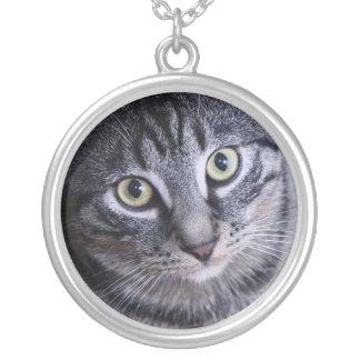 Collier Visage gris adorable de chat