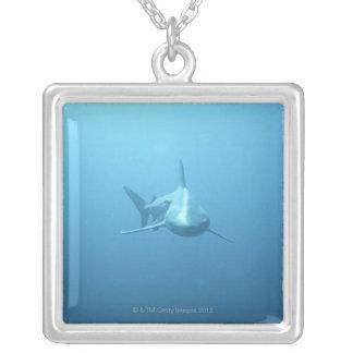 Collier Vue de face d'un requin de tigre