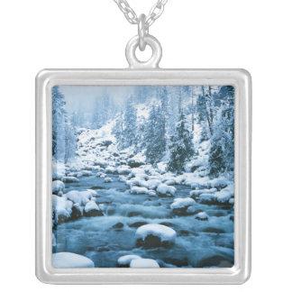 Collier WA, réserve forestière de Wenatchee, cascade