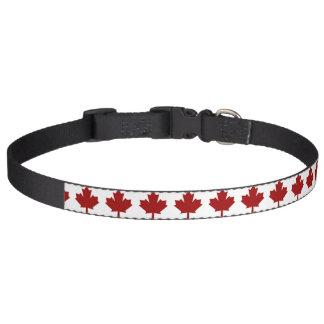 Colliers Pour Animaux Domestiques Feuille d'érable du Canada en rouge