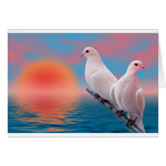 colombe carte de vœux