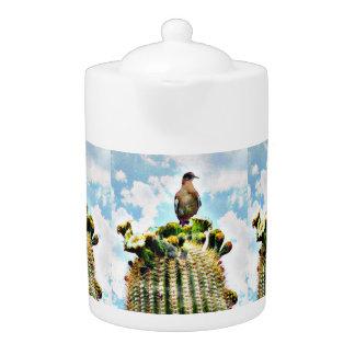 Colombe sur le pot de thé de Saguaro