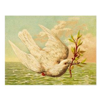 Colombe vintage de paix carte postale