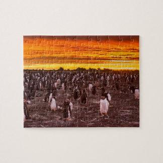 Colonie de pingouin au coucher du soleil, les puzzle