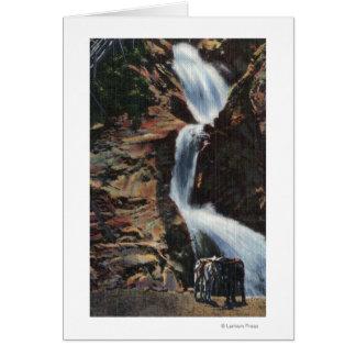 Colorado Springs, Co - abaissez trois de l'automne Carte De Vœux