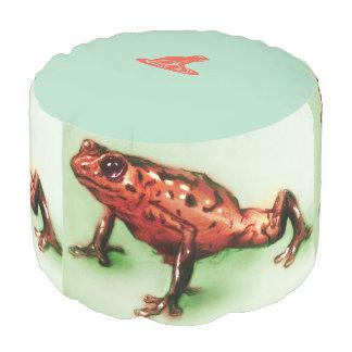 Coloré illustré autour du pouf - grenouille