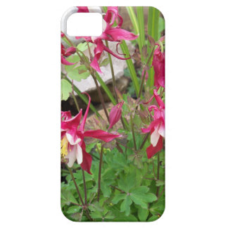 Columbines rose coque barely there iPhone 5