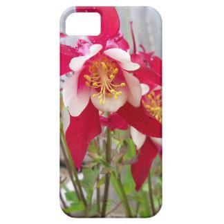 Columbines rose étuis iPhone 5