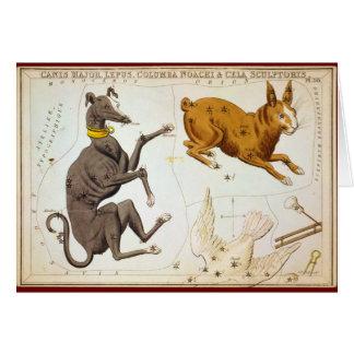 Commandant de Canis, Lepus, Columba Noachi et Carte De Vœux