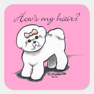Comment de Bichon Frise mes cheveux Sticker Carré