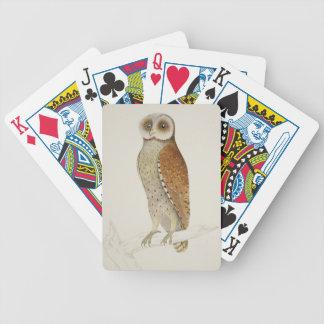 Comment maintenant hibou de baie ? jeu de cartes