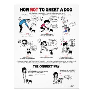 """Comment ne pas saluer un chien - 8,5"""" x 11"""" prospectus 21,6 cm x 24,94 cm"""