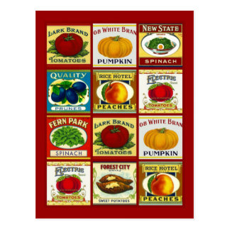 Conception de carte postale de carte de recette