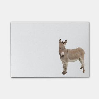Conception de peinture d'âne note post-it