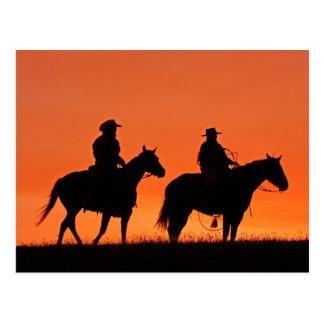 Conception de tour de cowboy de coucher du soleil carte postale