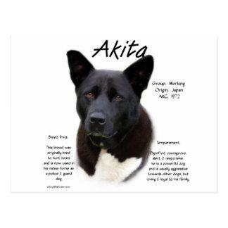 Conception d'histoire d'Akita (noir) Cartes Postales