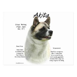 Conception d'histoire d'Akita (pinto) Cartes Postales