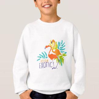 Conception exotique de logo avec des oiseaux de sweatshirt