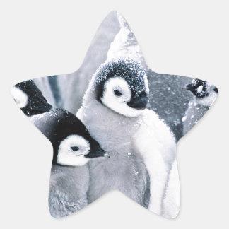 conception mignonne de pingouins de pingouin de autocollant en étoile