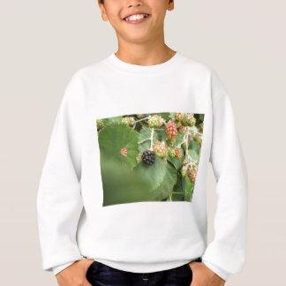 Conception noire de baie sweatshirt