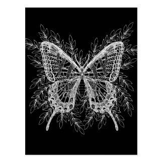 Conception noire et blanche de papillon cartes postales