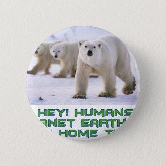 conceptions fraîches d'ours blanc badges