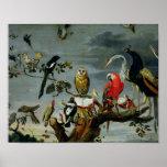 Concert des oiseaux posters
