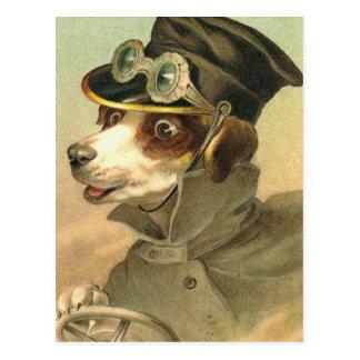Conducteur de chienchien carte postale