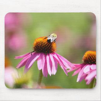 Coneflower et abeille de miel tapis de souris