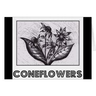 Coneflowers Carte De Vœux