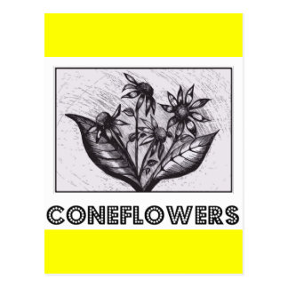 Coneflowers Carte Postale