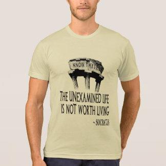 Connaissez le T-shirt du Poly-Coton des hommes de