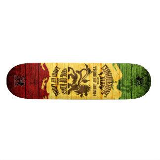 conquête du skateboard_pro de lion (3) plateaux de skateboards customisés
