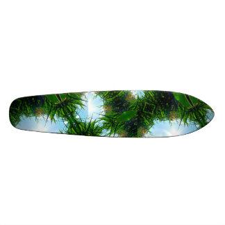 Conseil tropical planches à roulettes customisées