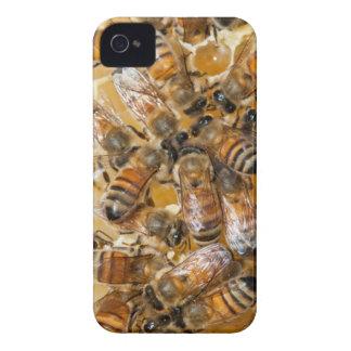Conservation d'abeille à la ferme du miel d'Arlo Coque iPhone 4 Case-Mate