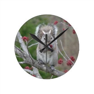 Consommation d'écureuil horloge ronde