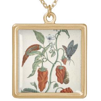 """Consoude, """"d'un de fines herbes curieux"""", 1782 (l' pendentif carré"""