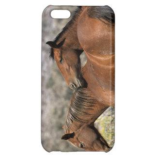 Contact sauvage de chevaux de mustang coque iPhone 5C