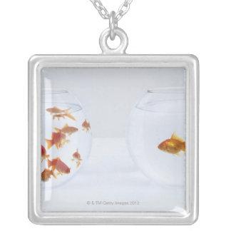 Contraste des beaucoup poisson rouge dans le bocal pendentif carré