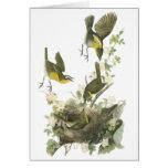 Conversation Jaune-breasted par Audubon Carte De Vœux