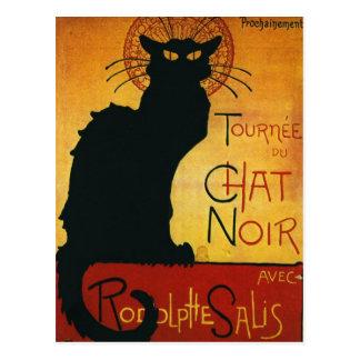 Conversation Noir - chat noir Carte Postale