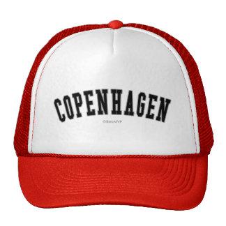 Copenhague Casquettes De Camionneur