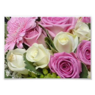 Copie blanche et rose de photo de roses