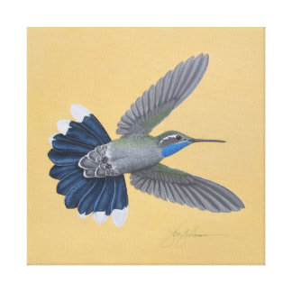 copie Bleu-throated de toile de colibri
